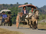 Burma, Mrauk U, Horse-Drawn Carts Heading for the Market Near Mrauk U, Myanmar Photographic Print by Nigel Pavitt