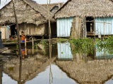 Amazon, Amazon River, the Floating Village of Belen, Iquitos, Peru Fotografie-Druck von Paul Harris
