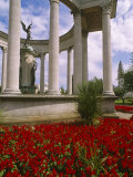 Cardiff, Park Place War Memorial, Cardiff City Centre, Wales Photographic Print by Paul Harris