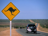 Kangaroo Road Sign, Western Australia, Australia Photographic Print by Doug Pearson