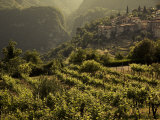 Lombardy, Lake District, Lake Garda, Tremosine Plateau, Sermerio, Vineyards, Italy Lámina fotográfica por Walter Bibikow