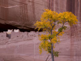 Arizona, Canyon De Chelly National Monument, USA Photographic Print by Alan Copson