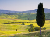 Landscale Near Pienza, Val D' Orcia, Tuscany, Italy Photographic Print by Doug Pearson