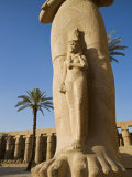 Colossal Statue of Ramses Ii Stands in the Great Forecourt of Karnak Temple, Luxor, Egypt Photographic Print by Julian Love