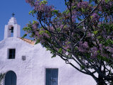 Purple Blossom Contrasts with the Whitewashed Walls of a Church Near Sant Francesco De S'Estany Photographic Print by Ian Aitken
