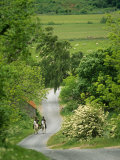 Northumberland, Harbottle, Horseriding Along a Country Lane, England Photographic Print by Paul Harris