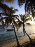 Vieques Island, Esperanza Bay, Puerto Rico Fotografisk tryk af Michele Falzone