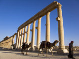 Spectacular Ruined City of Palmyra, Syria Photographic Print by Julian Love