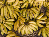 Port Louis, Central Market, Bananas, Mauritius Photographic Print by Walter Bibikow