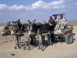 Herero Man and Two Women Ride Home in a Donkey Cart, Namibia Photographic Print by Nigel Pavitt