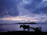 Dawn at Lake Ziway, Central Ethiopia, with the Silhouette of a Horse-Drawn Buggy Photographic Print by Nigel Pavitt
