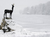 Bronze Statue of Slovenian Antelope in the Snow, Slovenia Photographic Print by Christian Kober