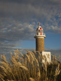 Montevideo, Punta Brava Lighthouse, Morning, Uruguay Photographic Print by Walter Bibikow