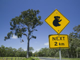 Queensland, Fraser Coast, Maryborough, Koala Crossing Sign on the Bruce Highway, Australia Photographic Print by Walter Bibikow