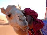 Tuareg and Dromedary, Sebha, Ubari, Libya, North Africa, Africa Fotografisk tryk af  Godong