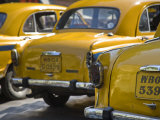 West Bengal, Kolkata, Calcutta, Yellow Ambassador Taxis, India Fotografiskt tryck av Jane Sweeney