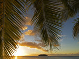 South Pacific, Fiji, Kadavu, Sunset Through Plams from the Beach on Dravuni Island Photographie par Paul Harris