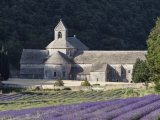 Abbey De Senanque and Lavender Fields, Near Gordes, Vaucluse, Provence, France, Europe Photographie par Guy Edwardes