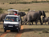 Tourists on Safari Watch a Herd of Elephants in the Masai Mara National Reserve Photographic Print by Andrew Mcconnell