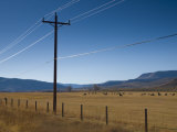 Colorado, Near Granby, Farmland, USA Photographic Print by Alan Copson