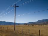 Colorado, Near Granby, Farmland, USA Photographic Print by Alan Copson
