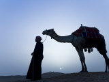Bedouin Leads His Camel Along the Top a Dune at Sunset, Giza, Egypt Photographic Print by Julian Love