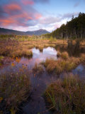 Maine, Baxter State Park, USA Photographic Print by Alan Copson