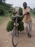 Bananas are Grown Everywhere in Uganda Photographic Print by Nigel Pavitt