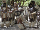 Zulu Tribal Dance Group, Dumazula Cultural Village, South Africa, Africa Photographic Print by Peter Groenendijk