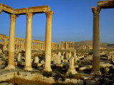 Pillars of the 'Great Colonnade' Stretch into the Distance at Palmyra Photographic Print by Amar Grover