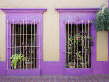 Nid Art Gallery, Old Town District, Mazatlan, Sinaloa State, Mexico, North America Photographic Print by Richard Cummins