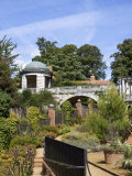 Pergola, Golders Hill Park, Bordering on Hampstead Heath, London, England, United Kingdom, Europe Photographic Print by Michael Kelly