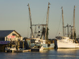 Lazaretto Creek Fishing Port, Tybee Island, Savannah, Georgia Photographic Print by Richard Cummins