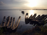 Dugout Canoes on the Congo River, Yangambi, Democratic Republic of Congo, Africa Photographic Print by Andrew Mcconnell