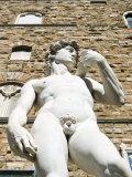 The David of Michelangelo, Piazza Della Signoria, Florence, Tuscany Photographic Print by Nico Tondini