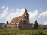 The 15th Century Fortified Church of St. Jacques and Grand Cru Vineyards Photographic Print by Pearl Bucknall