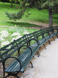 Benches, Central Park, Manhattan Fotografie-Druck von Amanda Hall