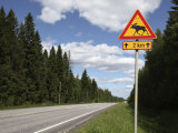 Road Sign for Elk Crossing, Highway Number 14, Punkaharju Ridge, Savonlinna Photographic Print by Dallas & John Heaton