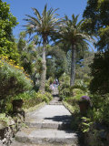 Abbey Gardens, Tresco, Isles of Scilly, Cornwall, United Kingdom, Europe Photographic Print by Robert Harding