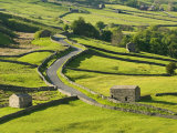 View of Traditional Stone Barns and Walls Near Thwaite in Swaledale, Yorkshire Photographic Print by John Woodworth