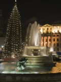 Christmas Tree and Fountains in Trafalgar Square at Night, London Photographic Print by Hazel Stuart