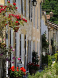 Street of Houses, St. Jean De Cole, Dordogne, France, Europe Photographic Print by Peter Richardson