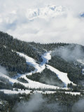 Tree Lined Ski Slopes, Whistler Mountain Resort Photographic Print by Christian Kober