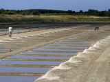 Collecting Salt in Salt Pans, Ars-En-Re, Ile De Re, Charente Maritime, France, Europe Photographic Print by Peter Richardson