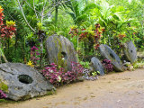 Stone Money Bank, Yap, Micronesia, Pacific Photographic Print by Nico Tondini