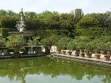 Fontana Dell'Oceano, Boboli Garden, Florence, Tuscany Photographic Print by Nico Tondini