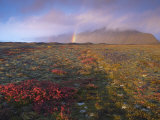Autumn Colours and Rainbow over Illuklettar Near Skaftafellsjokull Glacier Seen in the Distance Photographic Print by Patrick Dieudonne