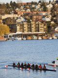 Rowing Team on Lake Union, Seattle, Washington State, United States of America, North America Photographic Print by Christian Kober