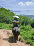 Riding Elephants in the Chalong Highlands, Phuket, Thailand, Southeast Asia, Asia Photographic Print by Nico Tondini