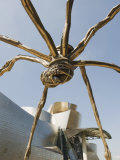 The Guggenheim, Designed by Architect Frank Gehry, and Giant Spider Sculpture by Louise Bourgeois Photographic Print by Christian Kober